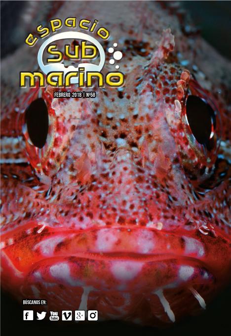 Revista Espacio Submarino Febrero 2018 Nº58