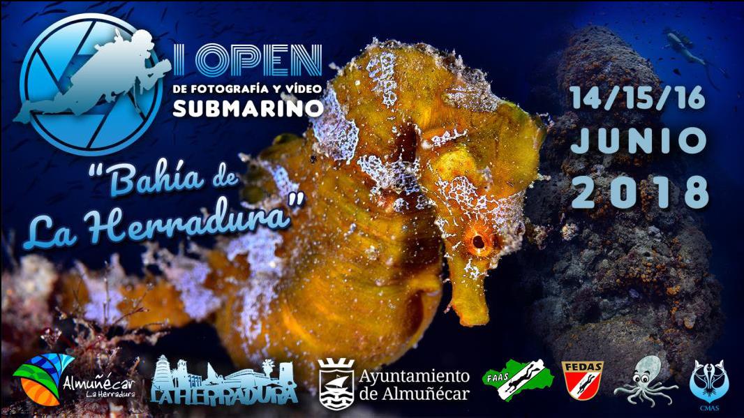 Open De Fotografía De Y Vídeo Submarino Bahía De La Herradura